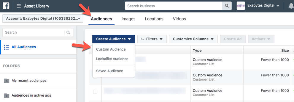 Where to click Facebook Custom Audience